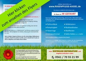 Flyer Rasenpflege Kassel